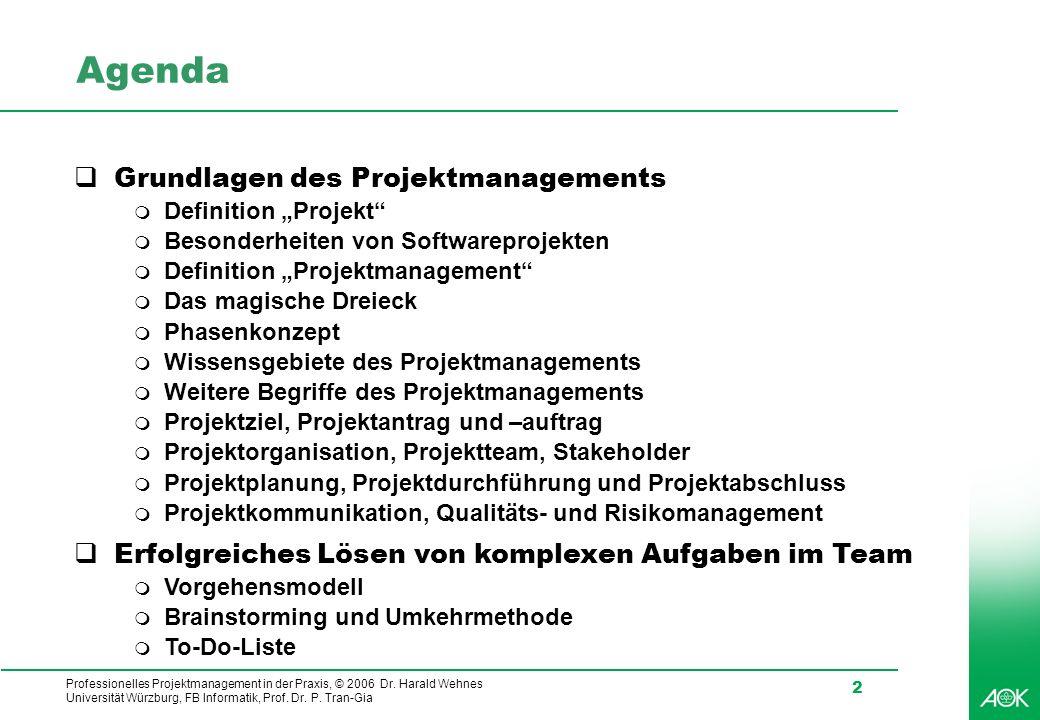 Professionelles Projektmanagement in der Praxis, © 2006 Dr. Harald Wehnes Universität Würzburg, FB Informatik, Prof. Dr. P. Tran-Gia 2 Agenda Grundlag