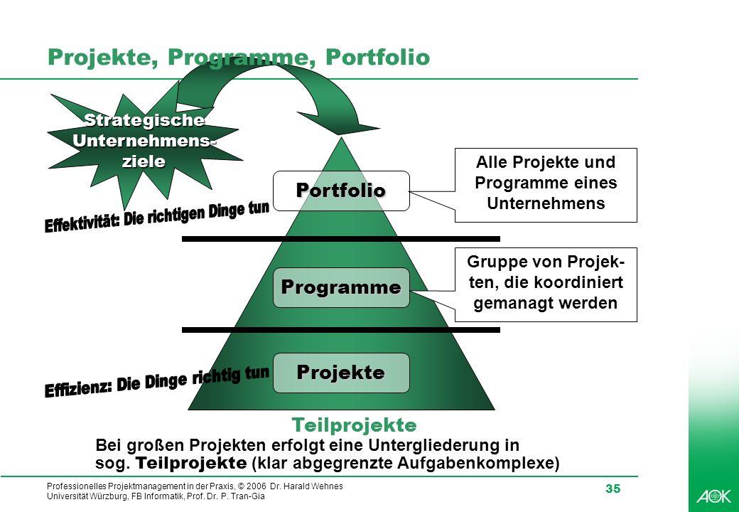 Professionelles Projektmanagement in der Praxis, © 2006 Dr. Harald Wehnes Universität Würzburg, FB Informatik, Prof. Dr. P. Tran-Gia 35 Projekte, Prog