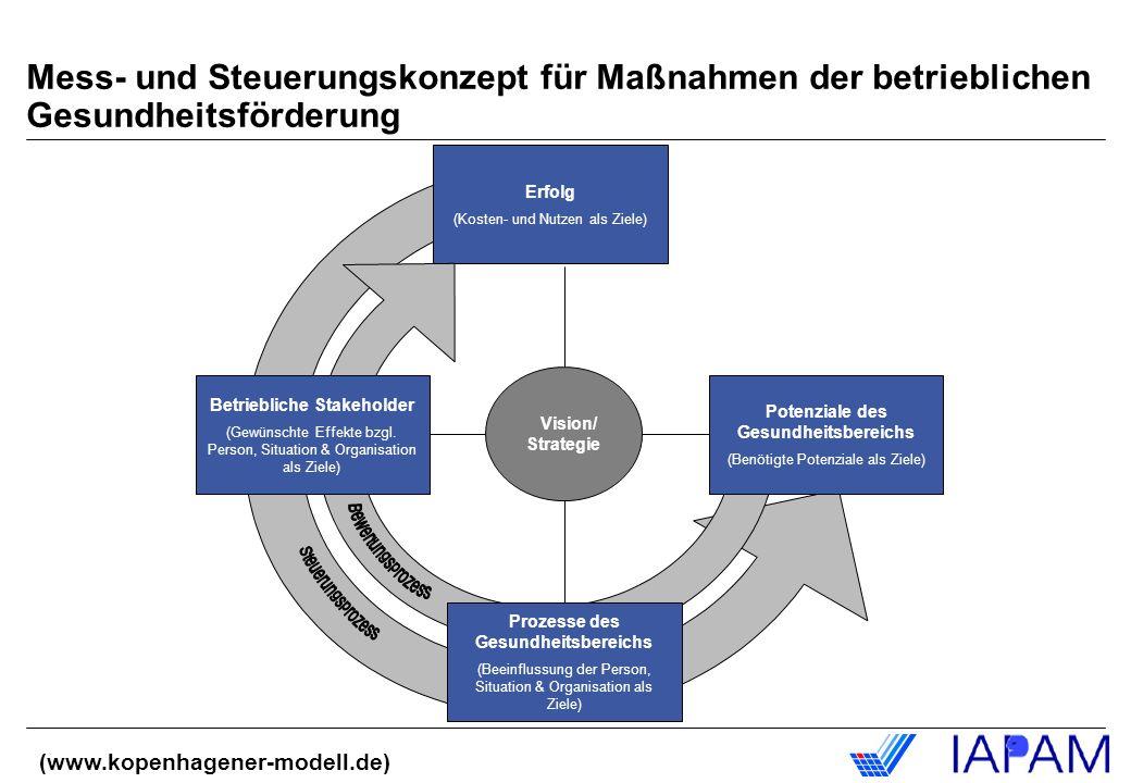 Erfolg (Kosten- und Nutzen als Ziele) Vision/ Strategie Betriebliche Stakeholder (Gewünschte Effekte bzgl. Person, Situation & Organisation als Ziele)