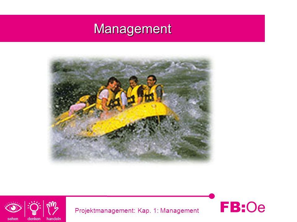 sehen denken handeln FB: Oe Projektmanagement: Kap. 1: Management Management