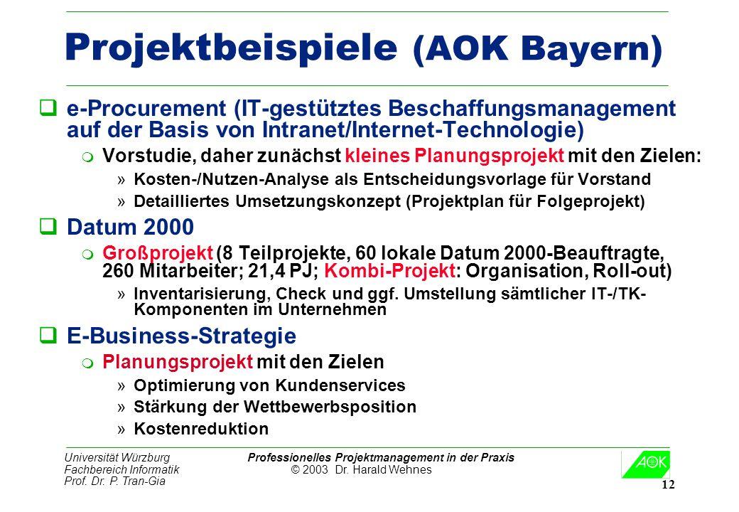 Universität Würzburg Professionelles Projektmanagement in der Praxis Fachbereich Informatik © 2003 Dr. Harald Wehnes Prof. Dr. P. Tran-Gia 12 Projektb