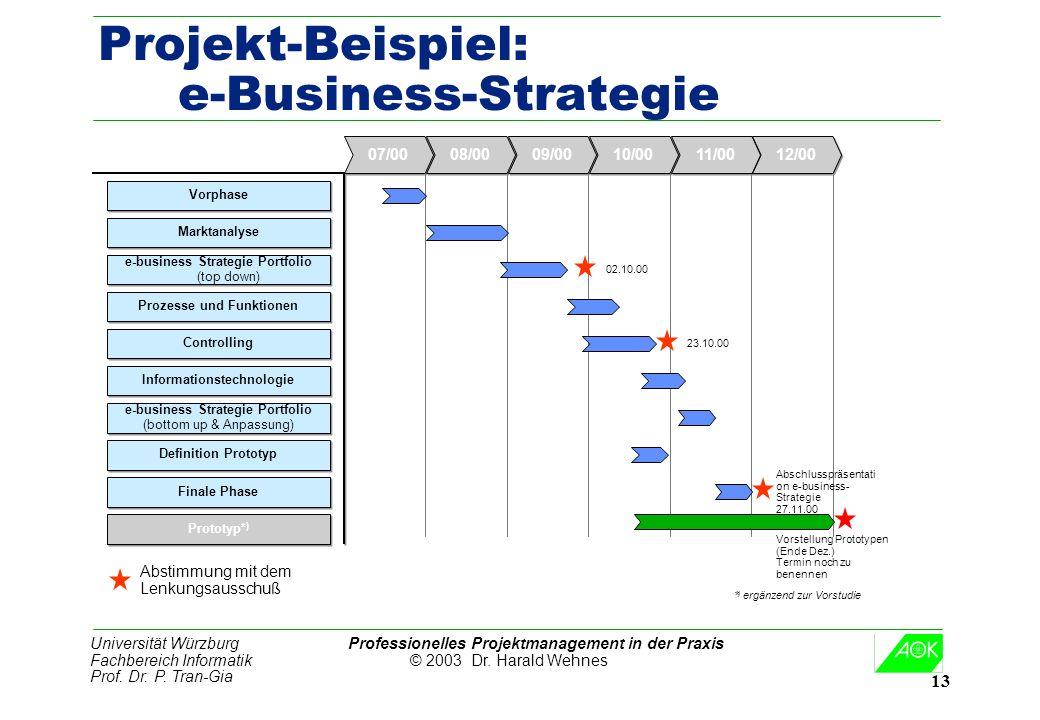 Universität Würzburg Professionelles Projektmanagement in der Praxis Fachbereich Informatik © 2003 Dr. Harald Wehnes Prof. Dr. P. Tran-Gia 13 Projekt-