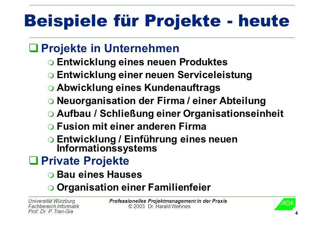Universität Würzburg Professionelles Projektmanagement in der Praxis Fachbereich Informatik © 2003 Dr. Harald Wehnes Prof. Dr. P. Tran-Gia 4 Beispiele