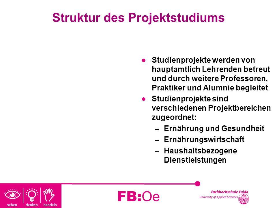 sehen denken handeln FB:Oe Struktur des Projektstudiums Studienprojekte werden von hauptamtlich Lehrenden betreut und durch weitere Professoren, Prakt