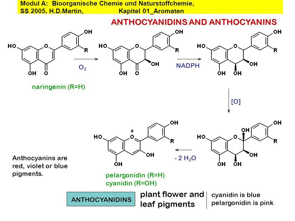 naringenin (R=H) NADPH [O] + - 2 H 2 O O2O2 pelargonidin (R=H) cyanidin (R=OH) ANTHOCYANIDINS AND ANTHOCYANINS plant flower and leaf pigments ANTHOCYA