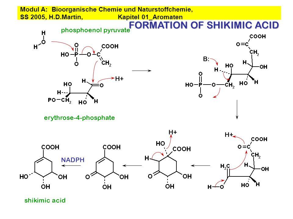 H+ erythrose-4-phosphate phosphoenol pyruvate H+ shikimic acid NADPH H+ FORMATION OF SHIKIMIC ACID B: Modul A: Bioorganische Chemie und Naturstoffchem
