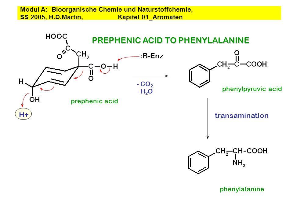 PREPHENIC ACID TO PHENYLALANINE prephenic acid :B-Enz H+ transamination phenylpyruvic acid phenylalanine - CO 2 - H 2 O Modul A: Bioorganische Chemie