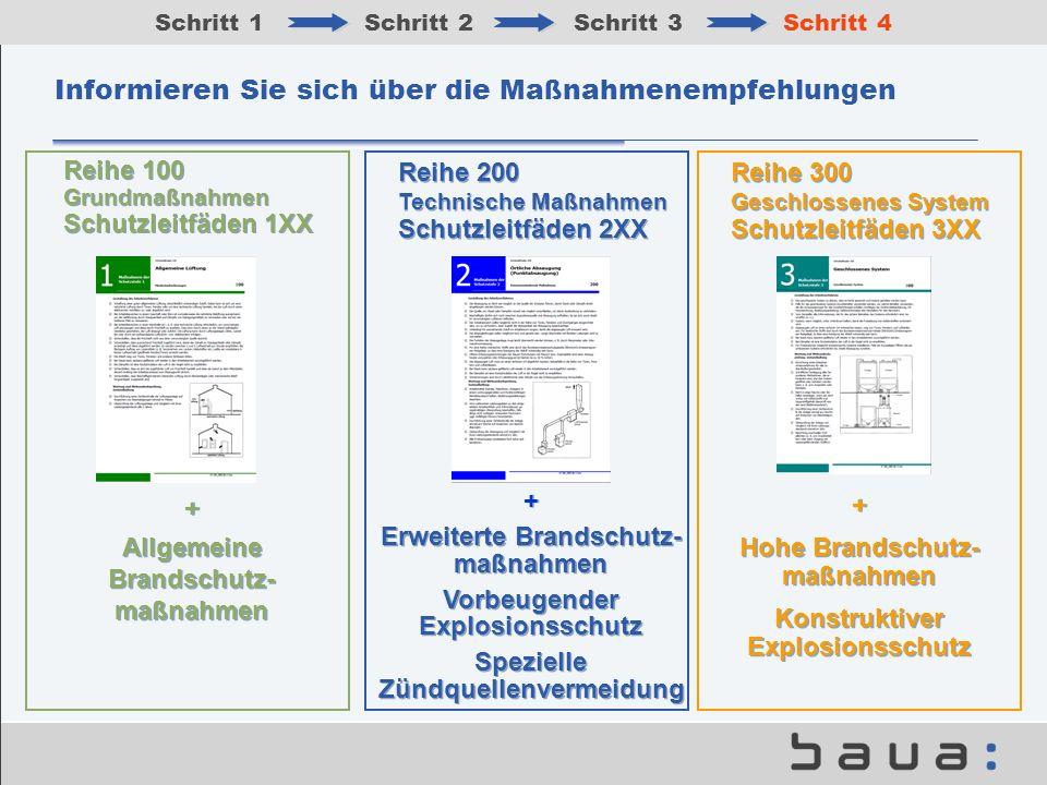 Informieren Sie sich über die Maßnahmenempfehlungen Schritt 1Schritt 2Schritt 3Schritt 4 Reihe 200 Technische Maßnahmen Schutzleitfäden 2XX Reihe 300