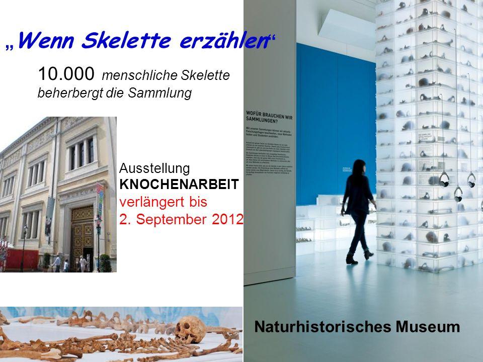 ein DENKMAL für Donald Ausstellung ANIMATUS 2008 Ausstellung KNOCHENARBEIT verlängert bis 2. September 2012 Wenn Skelette erzählen Naturhistorisches M