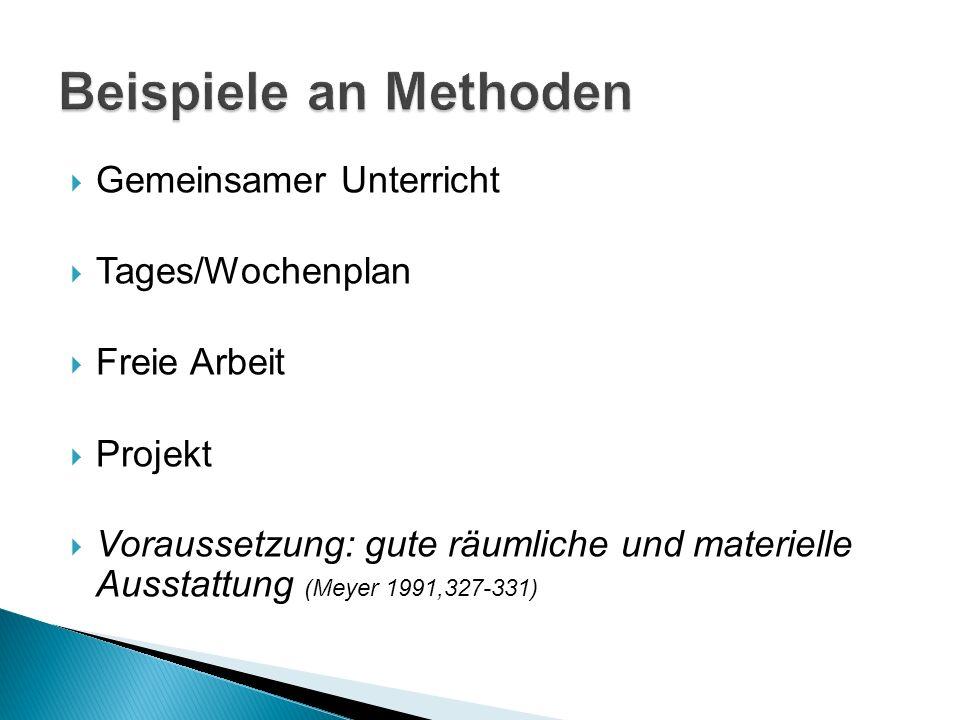 Gemeinsamer Unterricht Tages/Wochenplan Freie Arbeit Projekt Voraussetzung: gute räumliche und materielle Ausstattung (Meyer 1991,327-331)