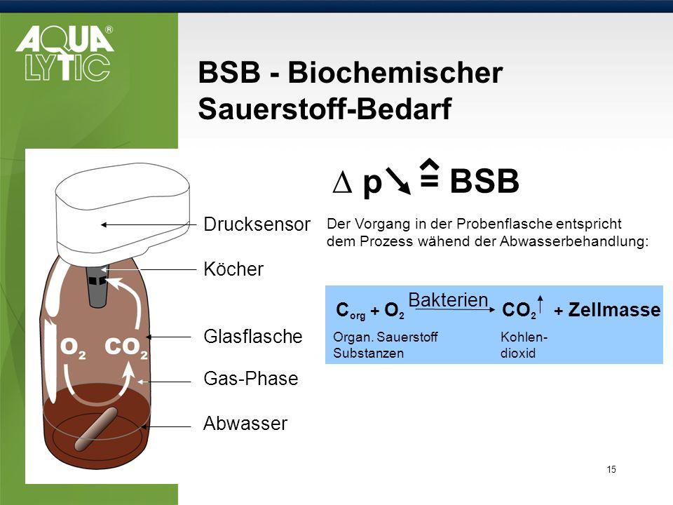 15 BSB - Biochemischer Sauerstoff-Bedarf C org + O 2 Bakterien CO 2 + Zellmasse Der Vorgang in der Probenflasche entspricht dem Prozess wähend der Abw
