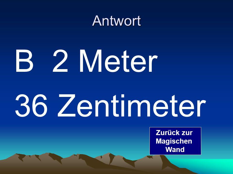 Frage 2 Wie groß ist der größte Mensch der Welt A 3Meter B 2 Meter 36 Zentimeter C100 Meter Zur richtigen Antwort Zurück zur Magischen Wand
