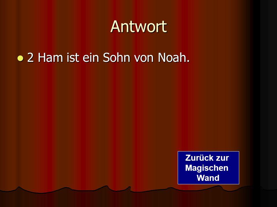 Frage 1. Wie heißt ein Sohn von Noah? 1. Fritz 2. Ham 3. Günter Zur richtigen Antwort Zurück zur Magischen Wand