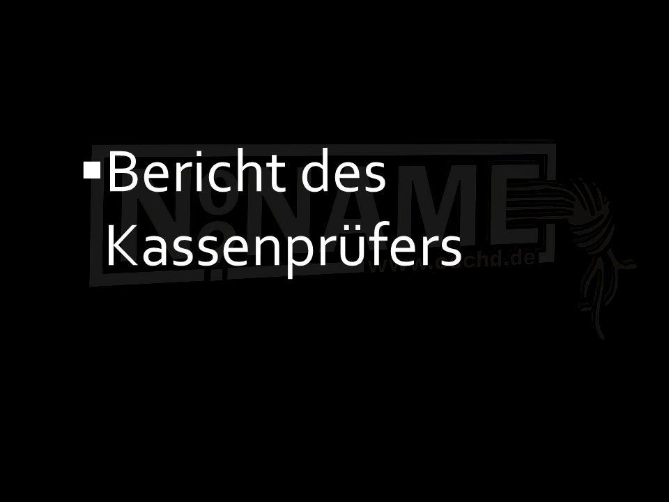 Bericht des Kassenprüfers