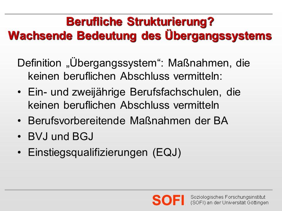 SOFI Berufliche Strukturierung.
