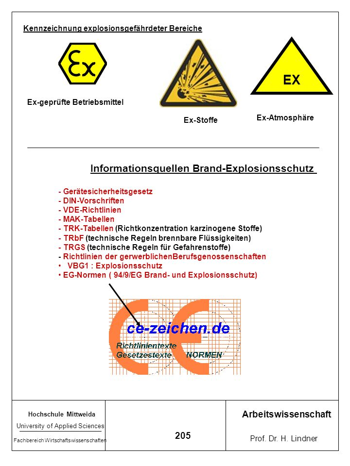 Hochschule Mittweida University of Applied Sciences Fachbereich Wirtschaftswissenschaften Arbeitswissenschaft Prof. Dr. H. Lindner 204 Beispiele für e