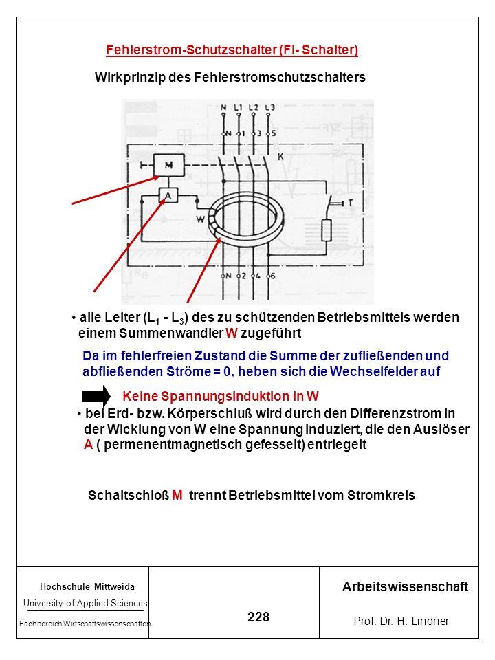 Hochschule Mittweida University of Applied Sciences Fachbereich Wirtschaftswissenschaften Arbeitswissenschaft Prof. Dr. H. Lindner 227 Schutzmaßnahmen