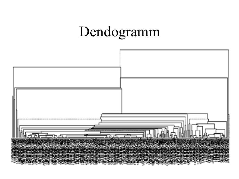 Dendogramm