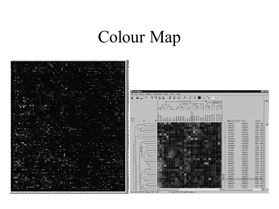 Colour Map