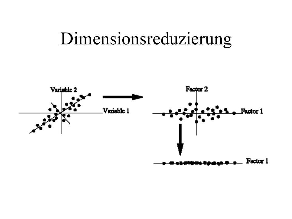Dimensionsreduzierung