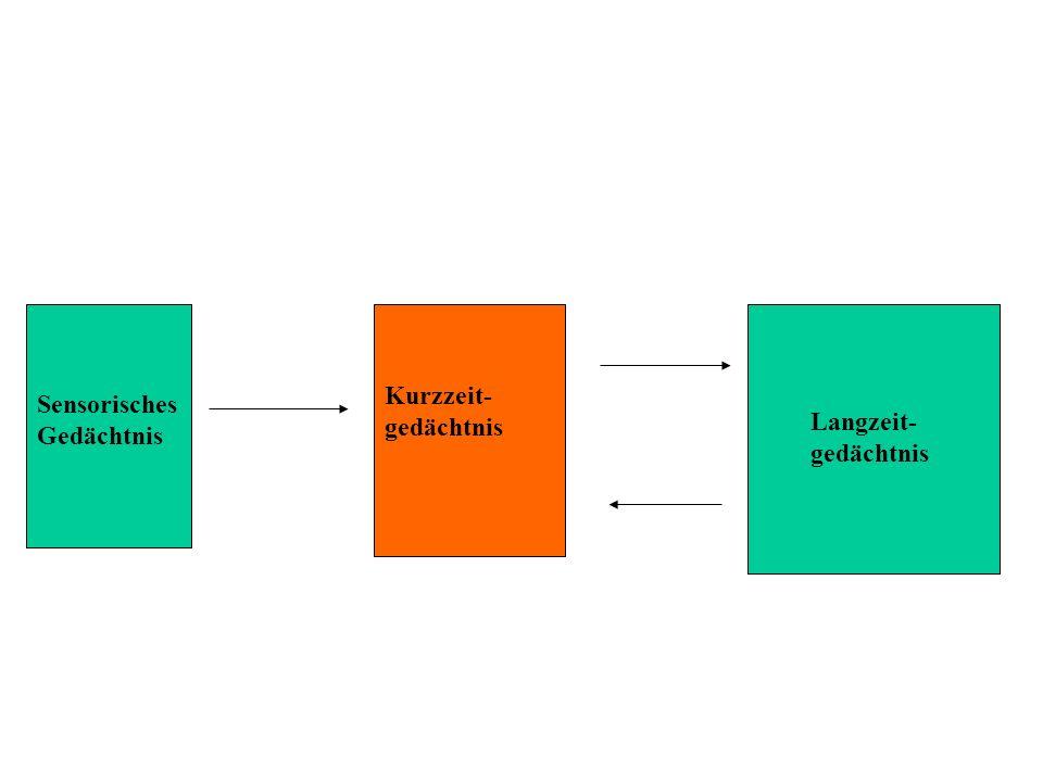 Sensorisches Gedächtnis Kurzzeit- gedächtnis Langzeit- gedächtnis