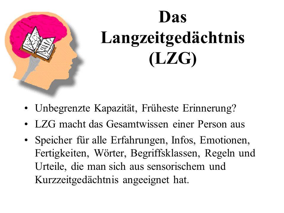Das Langzeitgedächtnis (LZG) Unbegrenzte Kapazität, Früheste Erinnerung.