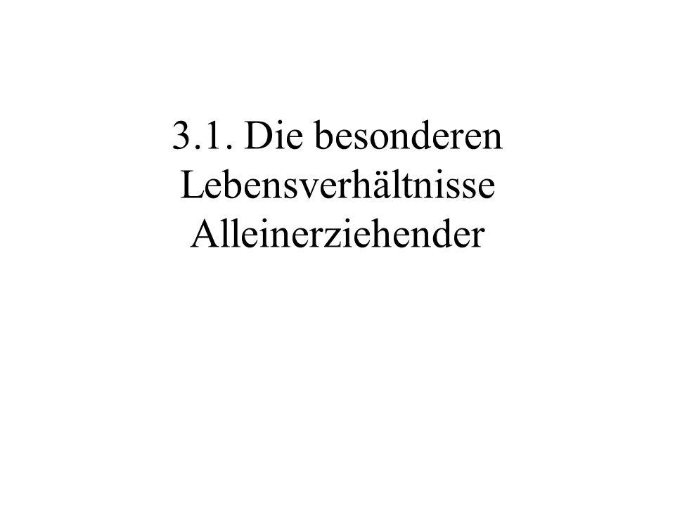 Gliederung 3.1. Die besonderen Lebensverhältnisse Alleinerziehender - Allgemeine Fakten - Bildung der Alleinerziehenden - Wohnsituation 3.2. Das psych
