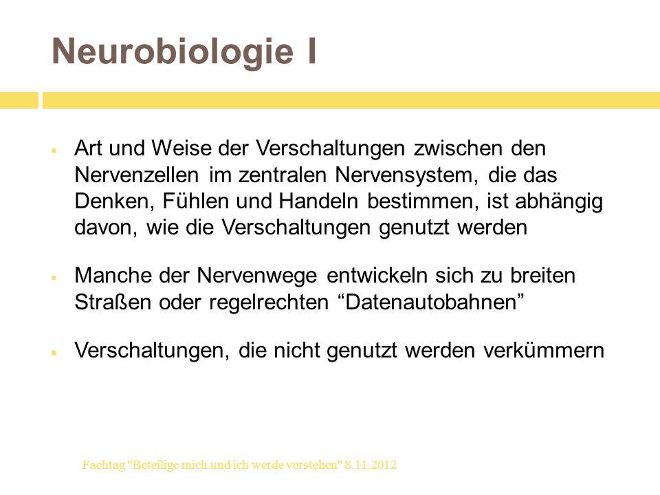 Neurobiologie I Art und Weise der Verschaltungen zwischen den Nervenzellen im zentralen Nervensystem, die das Denken, Fühlen und Handeln bestimmen, is