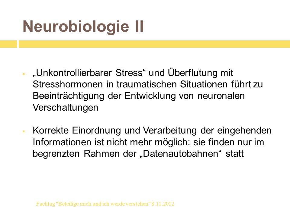 Neurobiologie II Unkontrollierbarer Stress und Überflutung mit Stresshormonen in traumatischen Situationen führt zu Beeinträchtigung der Entwicklung v