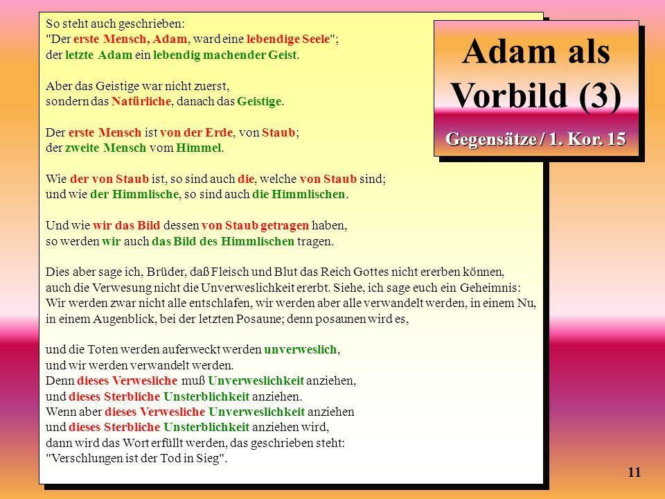11 Adam als Vorbild (2) So steht auch geschrieben: