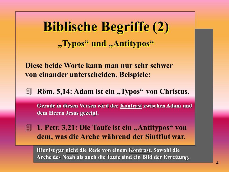 Biblische Begriffe (2) Typos und Antitypos Diese beide Worte kann man nur sehr schwer von einander unterscheiden. Beispiele: 4Röm. 5,14: Adam ist ein