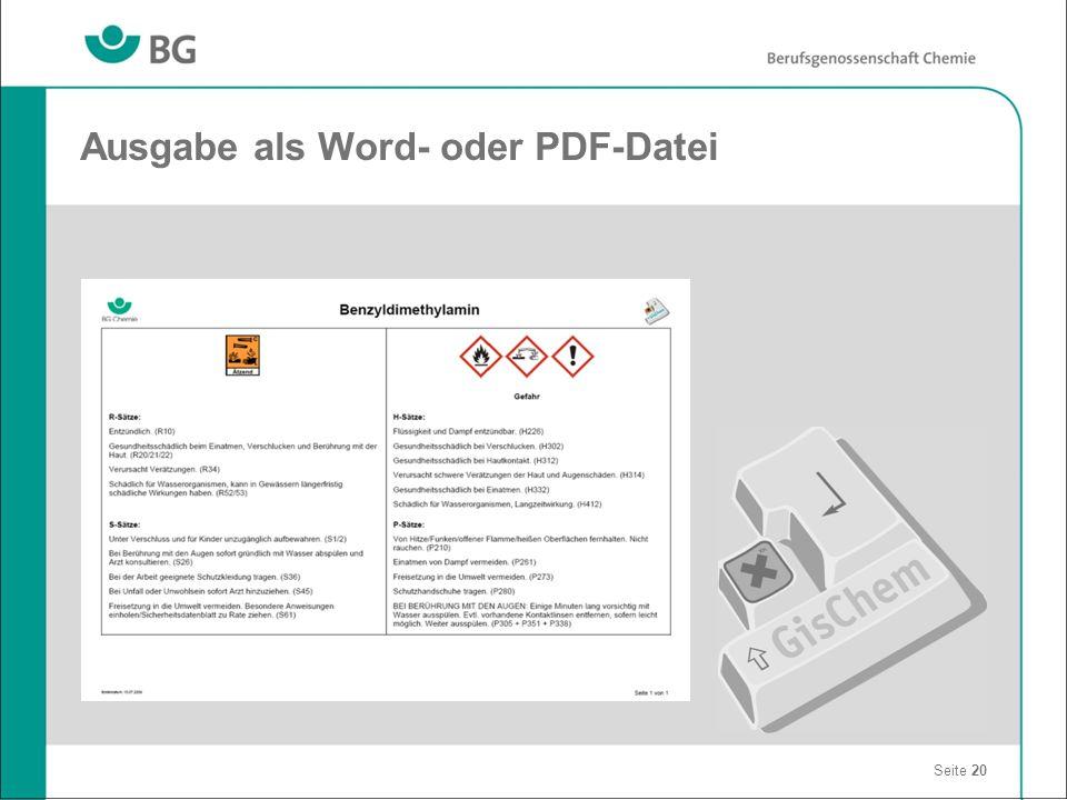 Ausgabe als Word- oder PDF-Datei Seite 20
