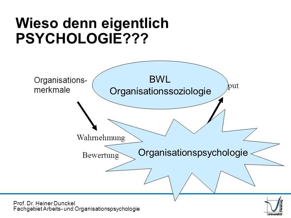 Prof. Dr. Heiner Dunckel Fachgebiet Arbeits- und Organisationspsychologie Verhalten Handlungen Organisations- merkmale Wahrnehmung Bewertung Output BW