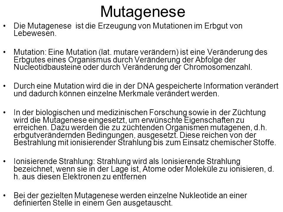 Mutagenese Die Mutagenese ist die Erzeugung von Mutationen im Erbgut von Lebewesen. Mutation: Eine Mutation (lat. mutare verändern) ist eine Veränderu