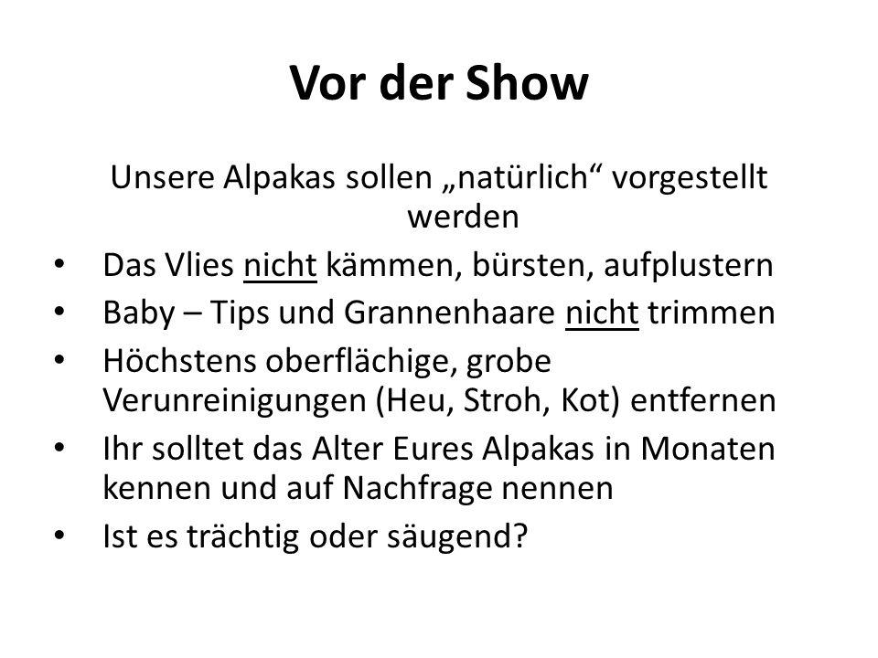 Vor der Show Unsere Alpakas sollen natürlich vorgestellt werden Das Vlies nicht kämmen, bürsten, aufplustern Baby – Tips und Grannenhaare nicht trimme