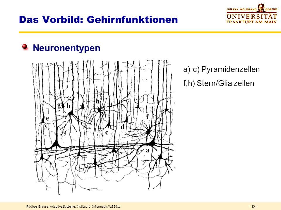 Rüdiger Brause: Adaptive Systeme, Institut für Informatik, WS 2011 - 11 - Das Vorbild: Gehirnfunktionen Unterteilung der Neuronenschicht: Darstellungsarten