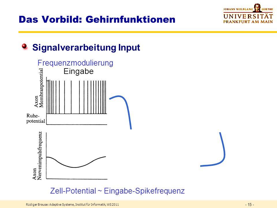 Rüdiger Brause: Adaptive Systeme, Institut für Informatik, WS 2011 - 14 - Spikes Das Vorbild: Gehirnfunktionen Signalverarbeitung Output