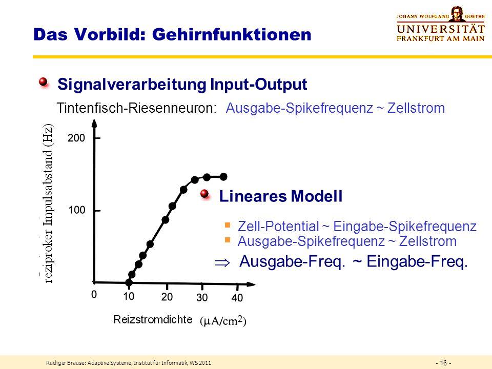 Rüdiger Brause: Adaptive Systeme, Institut für Informatik, WS 2011 - 15 - Das Vorbild: Gehirnfunktionen Signalverarbeitung Input Ruhe- potential Eingabe Zellkern Frequenzmodulierung Dekodierung Einheitsladungen Zell-Potential ~ Eingabe-Spikefrequenz