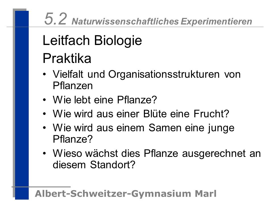 Albert-Schweitzer-Gymnasium Marl 5.2 Naturwissenschaftliches Experimentieren Leitfach Biologie Praktika Vielfalt und Organisationsstrukturen von Pflan