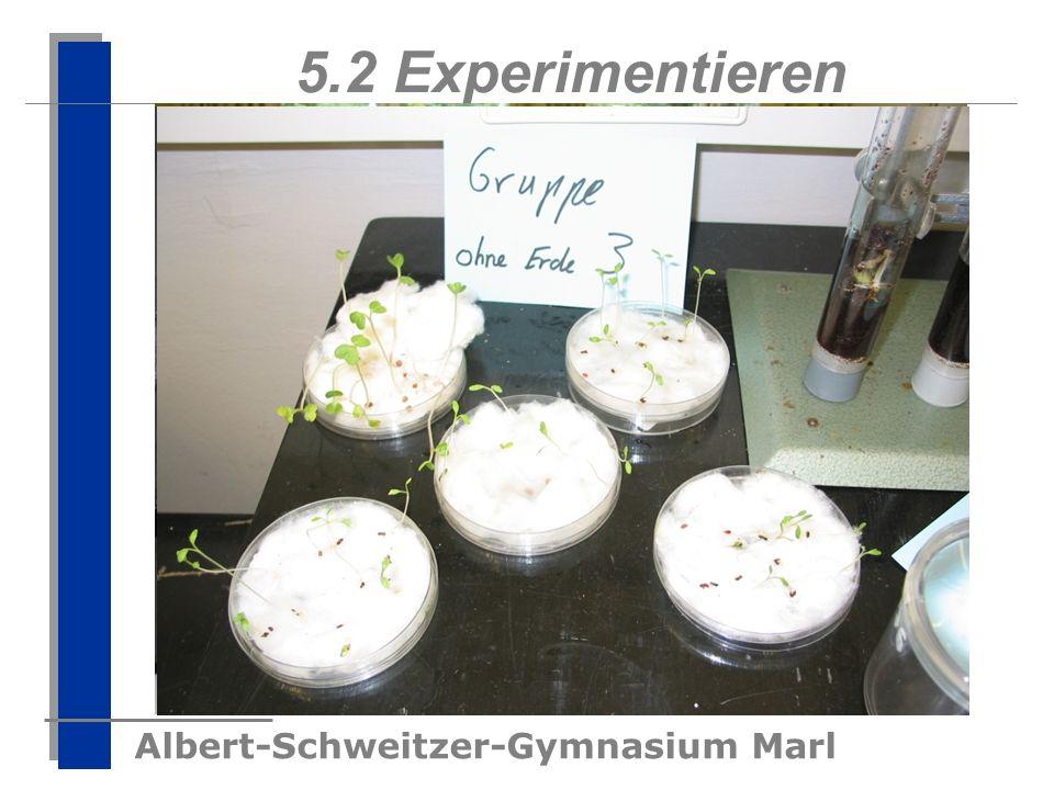 Albert-Schweitzer-Gymnasium Marl 5.2 Experimentieren