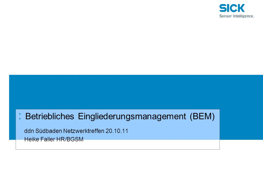 : Betriebliches Eingliederungsmanagement (BEM) ddn Südbaden Netzwerktreffen 20.10.11 Heike Faller HR/BGSM