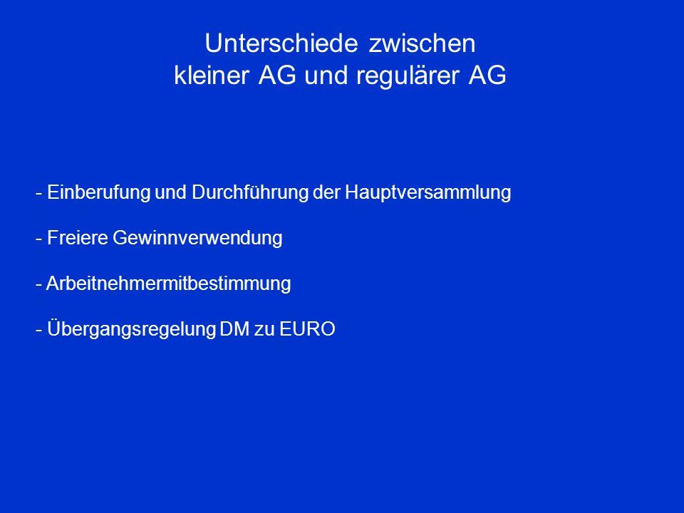 Unterschiede zwischen kleiner AG und regulärer AG - Einberufung und Durchführung der Hauptversammlung - Freiere Gewinnverwendung - Arbeitnehmermitbest