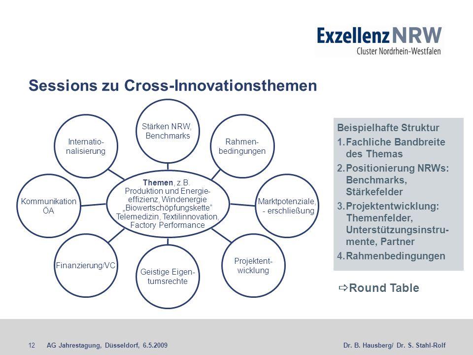 AG Jahrestagung, Düsseldorf, 6.5.200912Dr. B. Hausberg/ Dr. S. Stahl-Rolf Sessions zu Cross-Innovationsthemen Themen, z.B. Produktion und Energie- eff