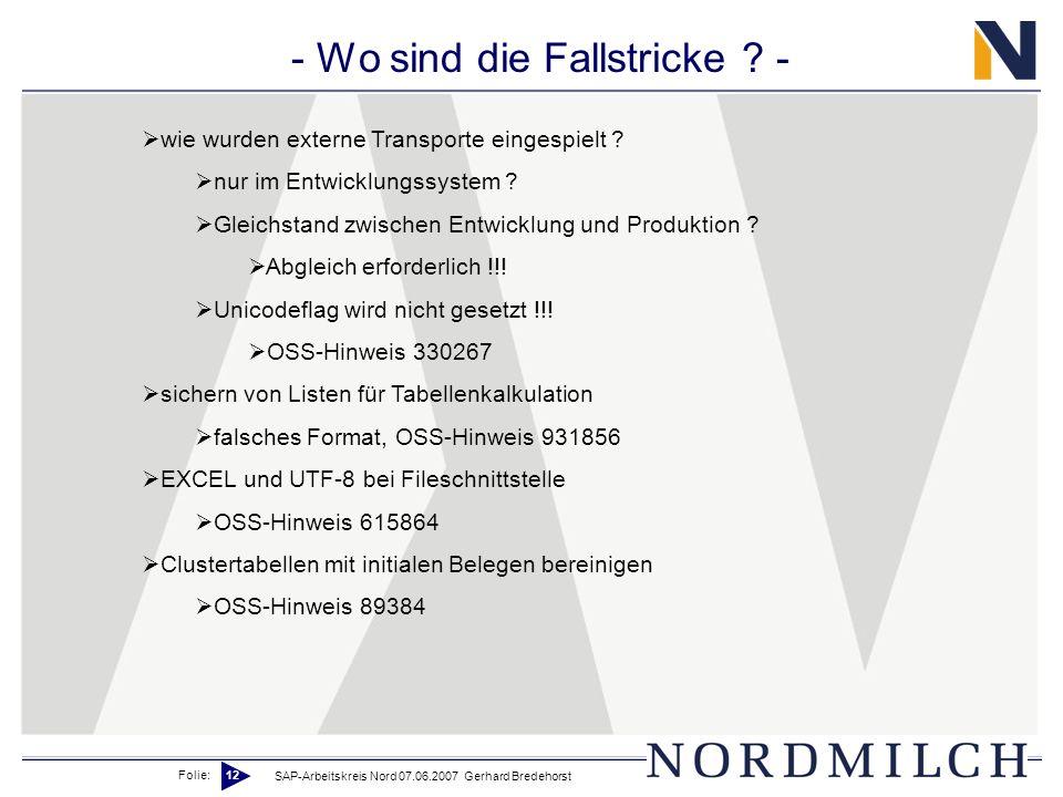 Folie: 12 SAP-Arbeitskreis Nord 07.06.2007 Gerhard Bredehorst - Wo sind die Fallstricke ? - wie wurden externe Transporte eingespielt ? nur im Entwick