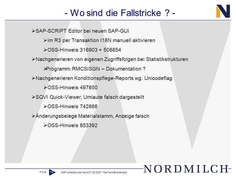 Folie: 13 SAP-Arbeitskreis Nord 07.06.2007 Gerhard Bredehorst - Wo sind die Fallstricke ? - SAP-SCRIPT Editor bei neuen SAP-GUI im R3 per Transaktion