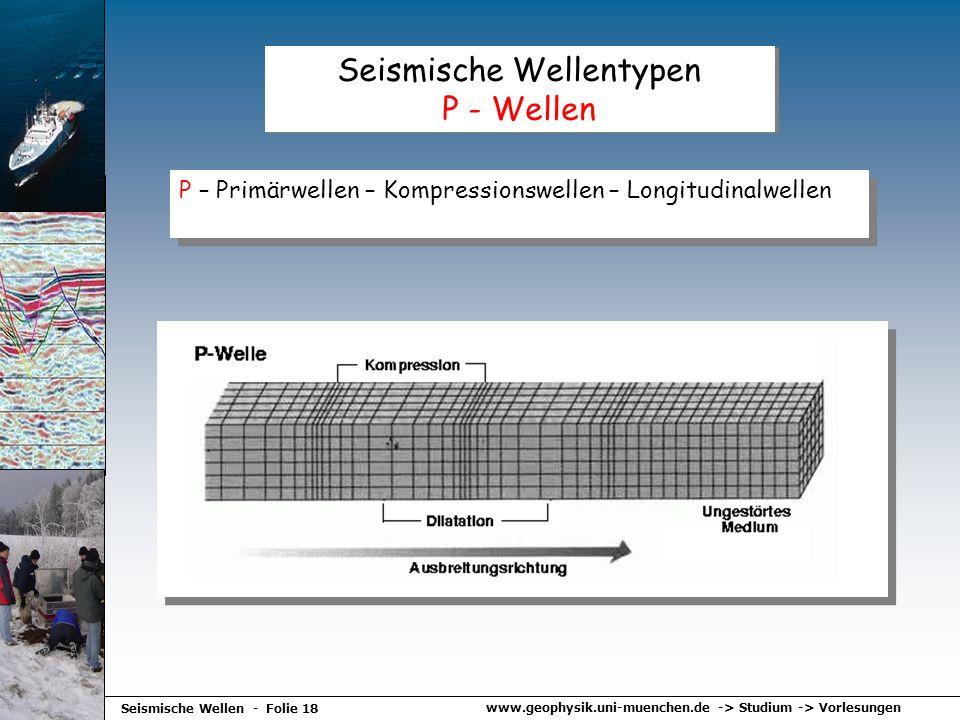 www.geophysik.uni-muenchen.de -> Studium -> Vorlesungen Seismische Wellen - Folie 18 Seismische Wellentypen P - Wellen P – Primärwellen – Kompressions