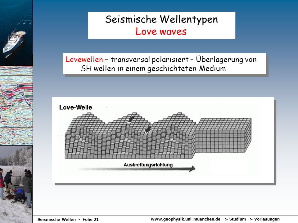www.geophysik.uni-muenchen.de -> Studium -> Vorlesungen Seismische Wellen - Folie 21 Seismische Wellentypen Love waves Lovewellen – transversal polari