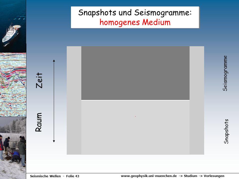 www.geophysik.uni-muenchen.de -> Studium -> Vorlesungen Seismische Wellen - Folie 43 Snapshots und Seismogramme: homogenes Medium Raum Zeit Seismogram
