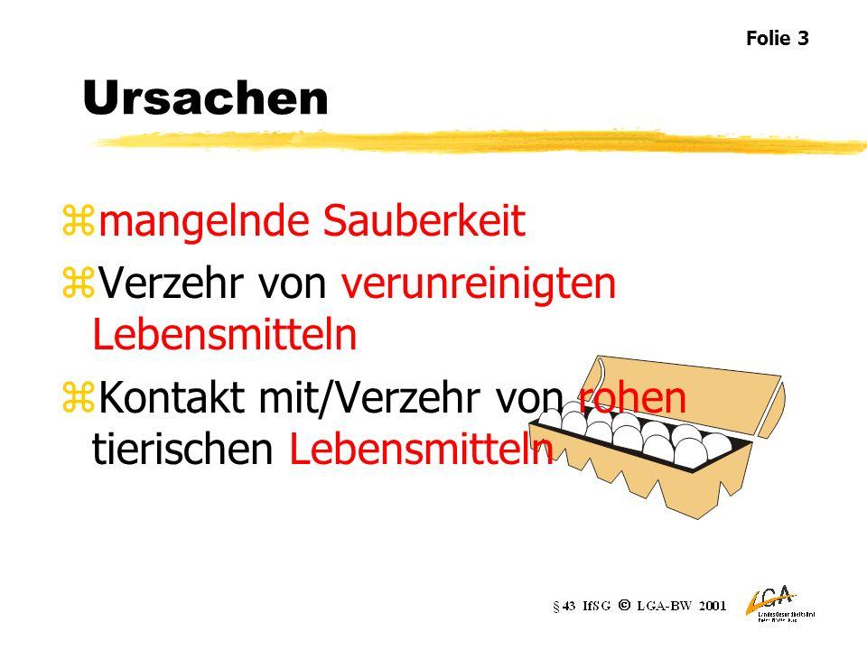 Krankheiten zBrechdurchfallerkrankungen Cholera bakterielle Ruhr Salmonellose andere Magen-Darm-Erkrankungen, z.B.