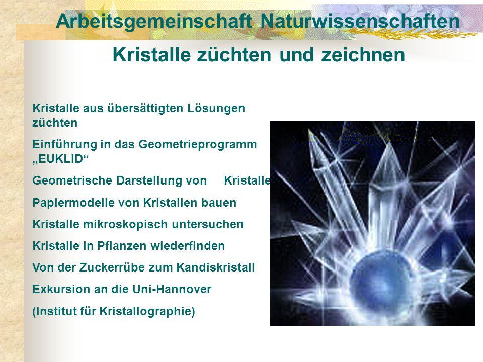 Arbeitsgemeinschaft Naturwissenschaften Kristalle züchten und zeichnen Kristalle aus übersättigten Lösungen züchten Einführung in das Geometrieprogram